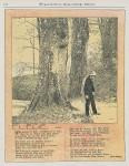 Koloman Moser, vienna secession, jugendstil, art nouveau, mucha, koloman moser, gustav Klimt